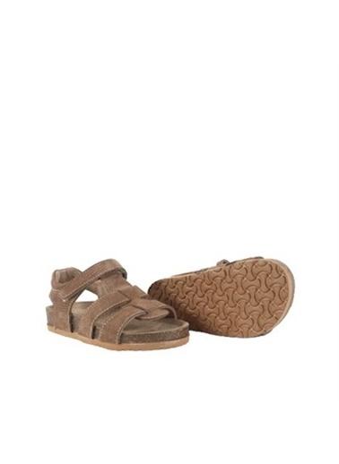 Kids A More Holley Tek Cırtlı Deri Unisex Çocuk Sandalet    Taba